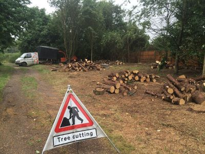 For tree surgery and stump grinding by experts, get in touch with Summers Tree & Garden Services. We are based in Nottingham and serve across Derby and Leicestershire.