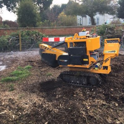 Stump Grinding in Nottinghamshire